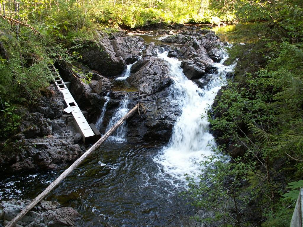 Rio Roberts Falls and Fish Ladder