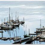 Thorne Bay Harbor - Ingman