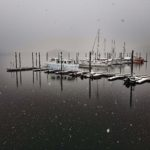 TB Marina in winter fog