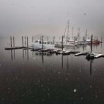 TB Marina in winter fog